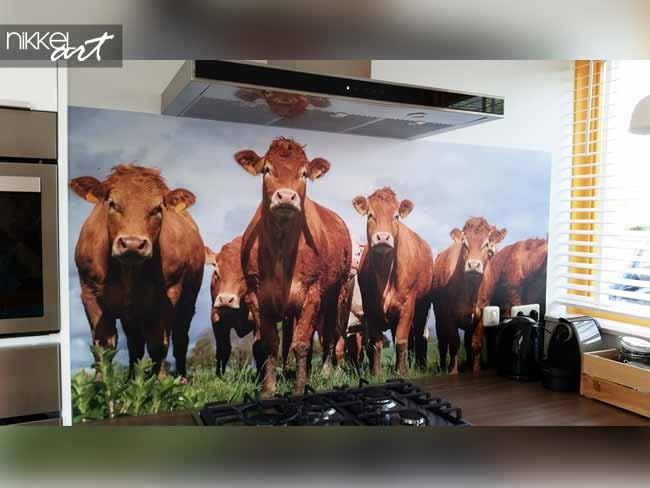Crédence de cuisine en verre imprimé Vache
